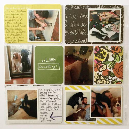 Delaney Paige Project LIfe4